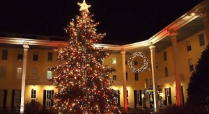 Tree Lighting Events in Cape May County