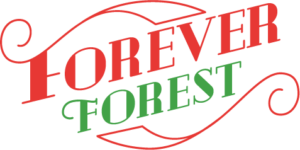 Forever Forest Review